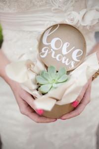 wedding favor plant